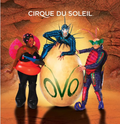 Three performers dressed as bugs pose by a large yellow egg with the OVO logo painted on it. Photo Credit: Cirque du Soleil